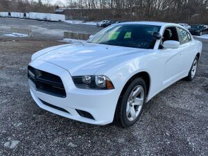 2014 DODGE CHARGER 2C3CDXAG4EH194674