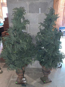 "Pair Of Lighted Porch Evergreen Trees 52"" Tall"